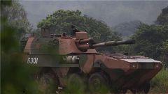 陆军第73集团军某合成旅:多型火力装备连贯射击 突出快打快撤