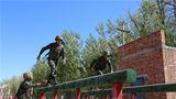 官兵们正在进行攀越障碍训练。