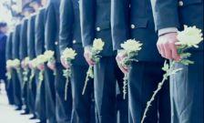 政策解读丨这些问题与烈士遗属息息相关