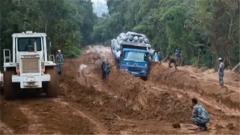 刚果(金)中国维和部队深入森林修复道路