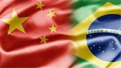 巴西副总统:巴中关系前景特别光明