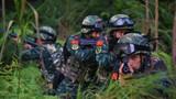 特戰隊員在密林中進行戰術搜索訓練。