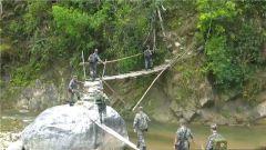 車陷懸崖  毒蛇擋道 官兵穿越原始叢林巡邏險情不斷