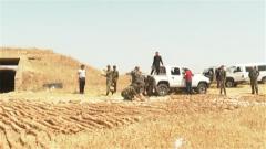 叙政府军发现一个极端组织遗留下来的地下密室……