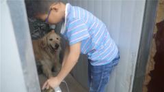 不一样的体验 军娃主动为搜救犬打扫卫生