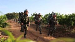 陆军第73集团军:多课目连贯考核 检验部队战斗力