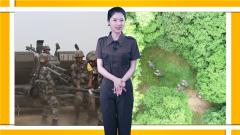【軍事嘚吧】2019陸軍系列比武大起底
