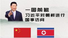 一图前瞻习近平对朝鲜进行国事访问