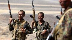 也门政府军打死17名胡塞武装人员