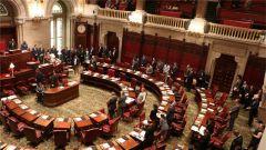 """美国纽约州参议院通过设立""""中国日""""的决议"""