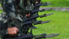 广西来宾:特战分队练兵忙 实战实训砺锋刃