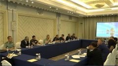 第七屆東盟地區論壇維和專家會落幕
