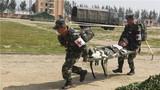 卫生专业官兵在进行伤员搬运。李忠举 摄
