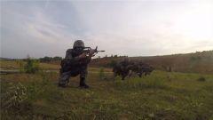 陆军第83集团军某特战旅:换羽重塑 锻造全域破袭的特战尖刀