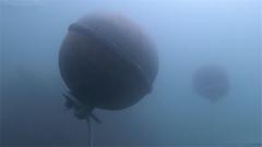 难度高危险大 反水雷蛙人在礁石海域排除3颗锚雷
