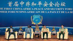 魏凤和集体会见首届中非和平安全论坛非方代表