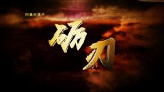 大型紀錄片《礪刃》8月2日開播