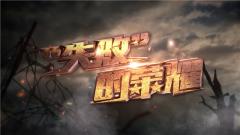 """《军事纪实》 20190808 """"失败""""的荣耀"""