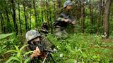 """为检验训练成效,激发练兵热情,近日,陆军第71集团军""""临汾旅""""开展了各兵种建制连训练抽考。图为战术考核。"""