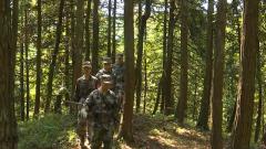 重庆民兵:坚守防火一线 高温巡山护林