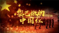 《军事纪实》今日播出《黎巴嫩的中国红》