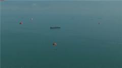 海军航空大学组织新毕业空勤学员进行海上跳伞训练