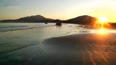 日俄拟试行争议岛屿联合观光项目