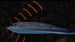外部设计 复合材料 隐身涂层 揭秘无人机隐身三大法宝