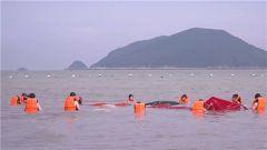 【聚焦实战化演兵场】渤海海域 飞行员海上救生训练