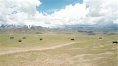 青藏高原 炮兵分队跨昼夜实弹射击