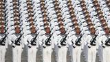 军姿站立训练。