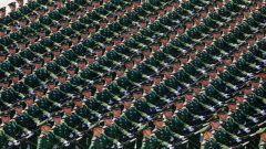忠诚卫士筑起钢铁长城——记参加庆祝中华人民共和国成立70周年阅兵的武警部队方队