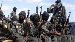 """索马里政府军打死24名""""青年党""""武装分子"""