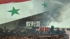 关注叙利亚局势 多方呼吁尊重叙利亚主权