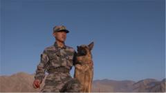 即將退伍的老兵做起了針線活,原來是為這位特殊戰友