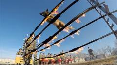 考驗膽量的時候到了 身經百戰的軍犬挑戰過火障