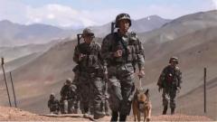 環境艱苦卻不孤單 馴導員與軍犬一起守衛祖國邊防線