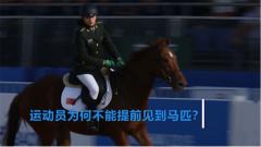 探秘军运会:抽签决定比赛用马 现代五项的马术比赛有点难