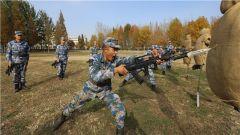 """軍事訓練等級評定:陸戰隊員的 """"榮譽之戰"""""""