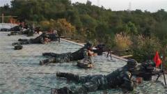 【聚焦實戰化演兵場】武警部隊組織狙擊和搜排爆集訓
