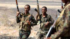 也门政府军打死7名胡塞武装人员