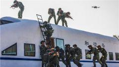 練得狠 才能打得贏!直擊武警特戰隊員動車反劫持演練現場