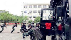 武警廣西總隊:城市反恐演練 錘煉特戰隊員打贏能力