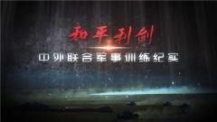 《军事纪实》20191128 和平利剑——中外联合军事训练纪实