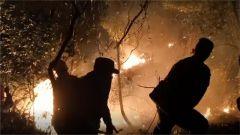 廣東陽春:武警官兵兩天一夜連續奮戰撲滅山林火災