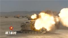 【第一军视】数十门火炮列阵齐射!高原实弹射击场面震撼