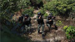 武警玉林支队:丛林大练兵 锻造反恐利刃