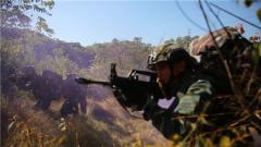 【第一军视】惊险刺激!丛林反恐演练 武警官兵身手不凡