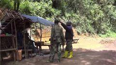 三名联合国工作人员在刚果(金)被绑架