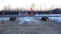 磨煉官兵意志  強健官兵體魄!新疆塔城軍分區某團掀起群眾性練兵熱潮